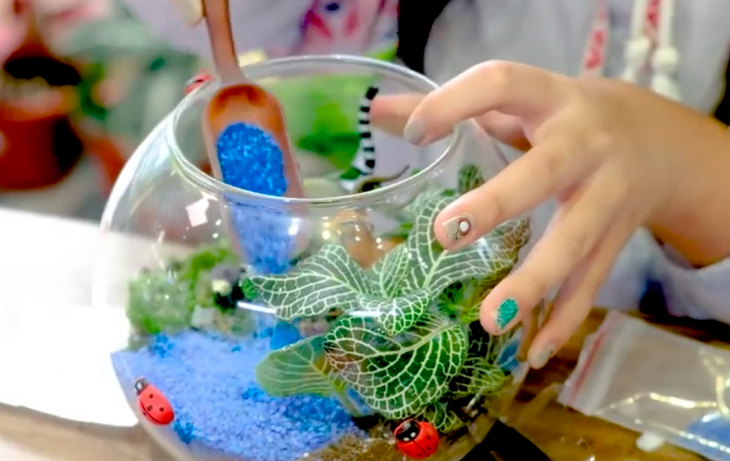Singapore Terrarium Workshop