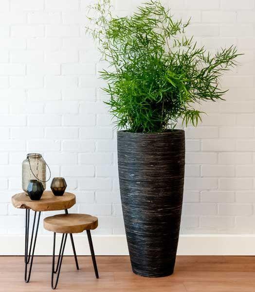 using plant pots