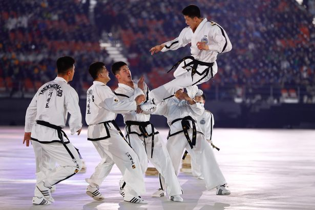 Everything you need to know about Taekwondo martial art and its online classes